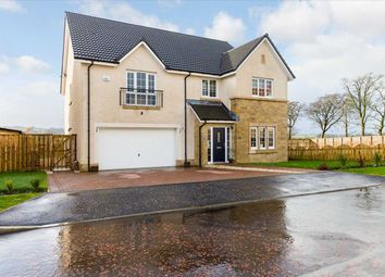 Thumbnail 5 bed detached house for sale in Kavanagh Crescent, Jackton, Jackton