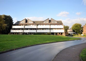 Thumbnail 3 bed flat for sale in Tollhouse Close, Chichester, West Sussex