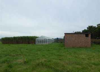 Thumbnail Land to let in Dorrington, Shrewsbury
