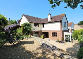 Thumbnail 5 bed detached house for sale in Wadeford, Chard