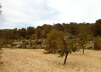 Thumbnail Land for sale in Monovar, Alicante, Spain