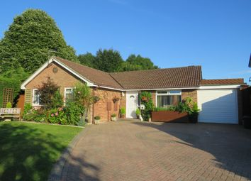 Thumbnail 4 bed detached bungalow for sale in The Warren, Holbury, Southampton