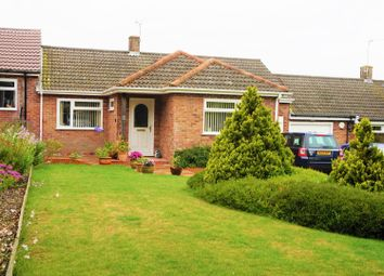 Thumbnail 2 bed bungalow for sale in South Acre, South Harting