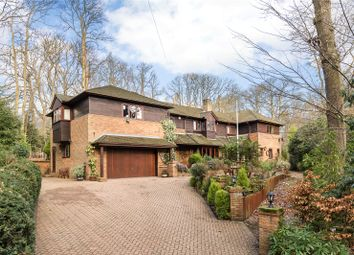 6 bed detached house to rent in Orchard Road, Tewin, Welwyn, Hertfordshire AL6