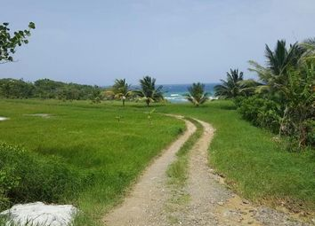 Thumbnail Land for sale in Albany, Saint Mary, Jamaica