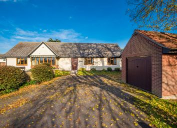 Thumbnail 3 bed semi-detached bungalow for sale in Salter Hall Mews, Sudbury