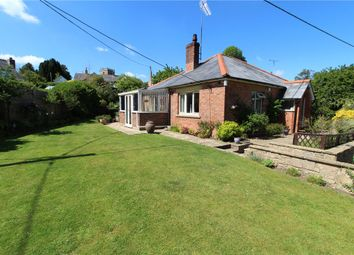 Thumbnail 3 bedroom detached bungalow for sale in Kingcombe Road, Toller Porcorum, Dorchester, Dorset