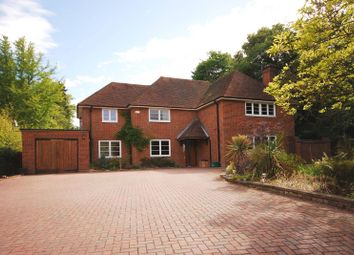 Thumbnail 4 bed property to rent in Aldersey Road, Guildford