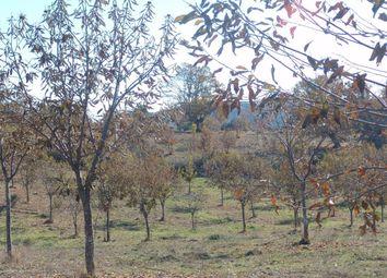 Thumbnail Land for sale in Teixugueira, Carrazedo De Montenegro E Curros, Valpaços, Vila Real, Norte, Portugal