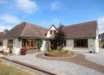 Thumbnail 5 bedroom detached bungalow for sale in Greenway Road, Galmpton, Brixham