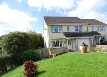 Thumbnail 3 bedroom detached house for sale in Pound Meadow, Parkham