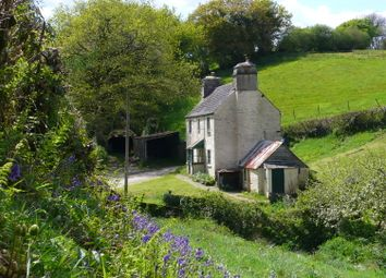 Thumbnail 3 bed cottage for sale in Halwell, Totnes