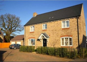 Thumbnail 4 bed detached house to rent in Dunlin Drive, Cringleford, Norwich