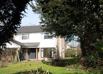 Thumbnail 4 bed detached house to rent in PE28