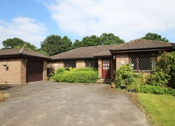 Thumbnail 3 bed detached bungalow for sale in Tuckers Drive, Cranleigh