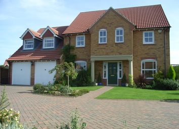 Thumbnail 4 bed detached house to rent in Nunthorpe Gardens, Nunthorpe, Middlesbrough