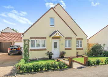 Thumbnail 3 bed bungalow for sale in Auction Way, Woolsery, Bideford