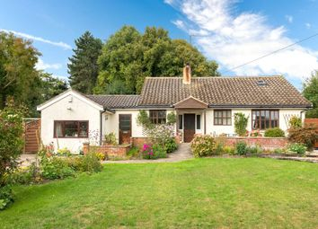 Thumbnail 4 bed detached bungalow for sale in Middle Street, Rippingale, Bourne