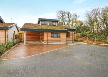 Thumbnail 3 bed bungalow for sale in Chilsworthy, Holsworthy