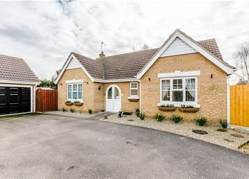 Thumbnail 3 bed bungalow for sale in Meadow Way, Mepal, Ely