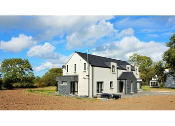 Thumbnail 5 bed detached house for sale in Milltown Road, Donaghcloney