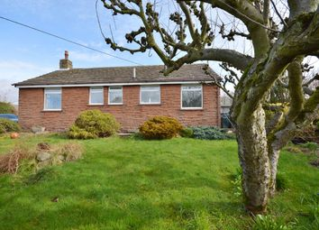 Thumbnail 3 bed detached bungalow to rent in Milburn, Penrith