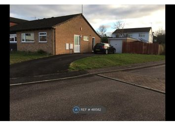 Thumbnail 2 bed bungalow to rent in Woodrush Close, Taunton