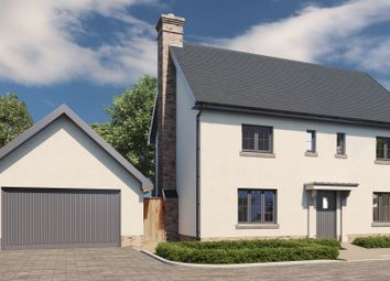 Thumbnail 4 bed detached house for sale in Rye Street, Bishop's Stortford
