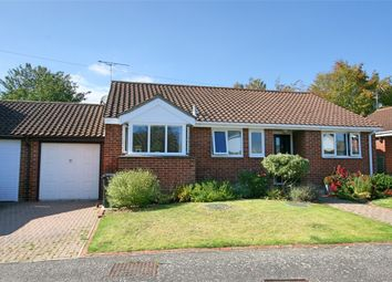 Thumbnail 3 bed detached bungalow for sale in Spring Lane, Great Totham, Maldon, Essex