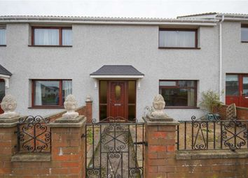 Thumbnail 2 bed terraced house for sale in Newfields, Berwick Upon Tweed