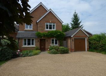 Thumbnail 4 bed property to rent in Chestnut Avenue, Wokingham