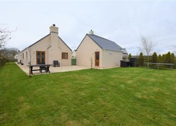 Thumbnail 4 bedroom detached bungalow for sale in Preseli View, Walton East, Clarbeston Road