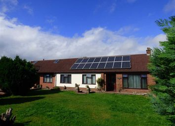 Thumbnail 4 bed detached bungalow for sale in Barrowell Lane, St. Briavels, Lydney
