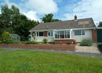 Thumbnail 3 bed semi-detached bungalow for sale in 6 Heol Onnen, North Park, Cardigan, Ceredigion