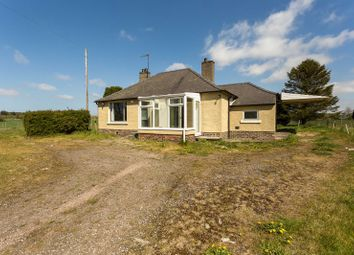 Thumbnail 3 bed bungalow for sale in Mill Of Murroes, Dundee