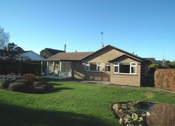 Thumbnail 4 bedroom bungalow to rent in Manor Road, Pitsford, Northampton