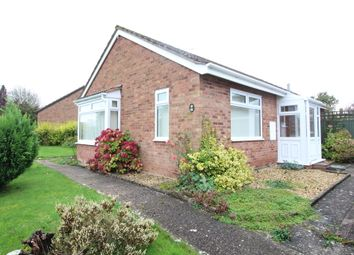 Thumbnail 2 bed detached bungalow to rent in Bearcroft, Weobley, Hereford
