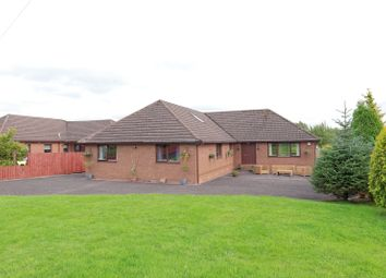 Thumbnail 5 bed bungalow for sale in Springfield Nurseries, Cleghorn, Lanark, South Lanarkshire