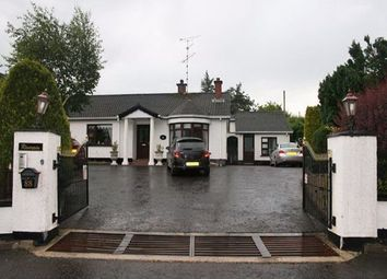 Thumbnail 5 bed detached house for sale in Blackfort Road, Omagh, County Tyrone
