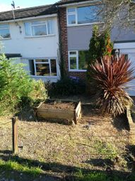 Thumbnail 3 bed terraced house to rent in Park Drive, Braintree