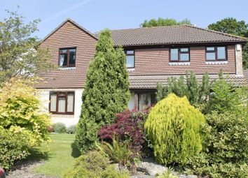 Thumbnail 4 bed detached house to rent in Partridge Green, New Milton