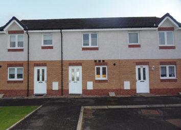 Thumbnail 2 bed terraced house to rent in Cyril Place, Paisley, Renfrewshire, 1Gr