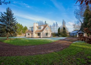 Thumbnail 3 bed detached house for sale in Norfolk, South Lopham, Near Diss Equestrian / Lifestyle