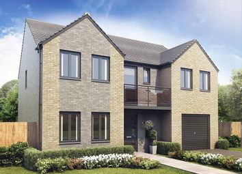 "Thumbnail 5 bed detached house for sale in ""The Edlingham "" at Aykley Heads, Durham"