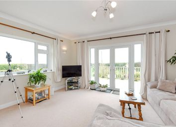 Thumbnail 5 bed detached bungalow for sale in Martinstown, Dorchester