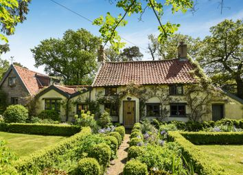 Thumbnail 5 bed cottage for sale in Shop Street, Whinburgh, Dereham