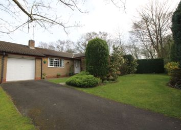Thumbnail 3 bed bungalow to rent in Westsyde, Ponteland, Newcastle Upon Tyne