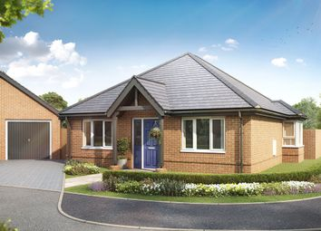 "Thumbnail 2 bed bungalow for sale in ""The Anmore"" at Kidmore Lane, Denmead, Waterlooville"