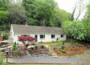 Thumbnail 3 bed detached bungalow for sale in The Holly And The Ivy, Commins Coch, Machynlleth, Powys