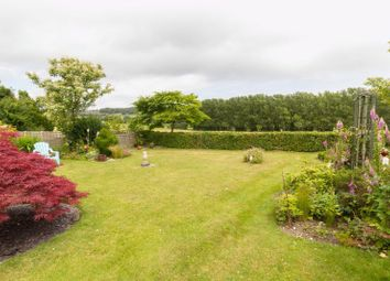 Thumbnail 2 bed detached bungalow for sale in High Street, Elham, Canterbury